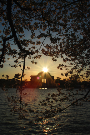 Jefferson Memorial Sunrise, Washington DC